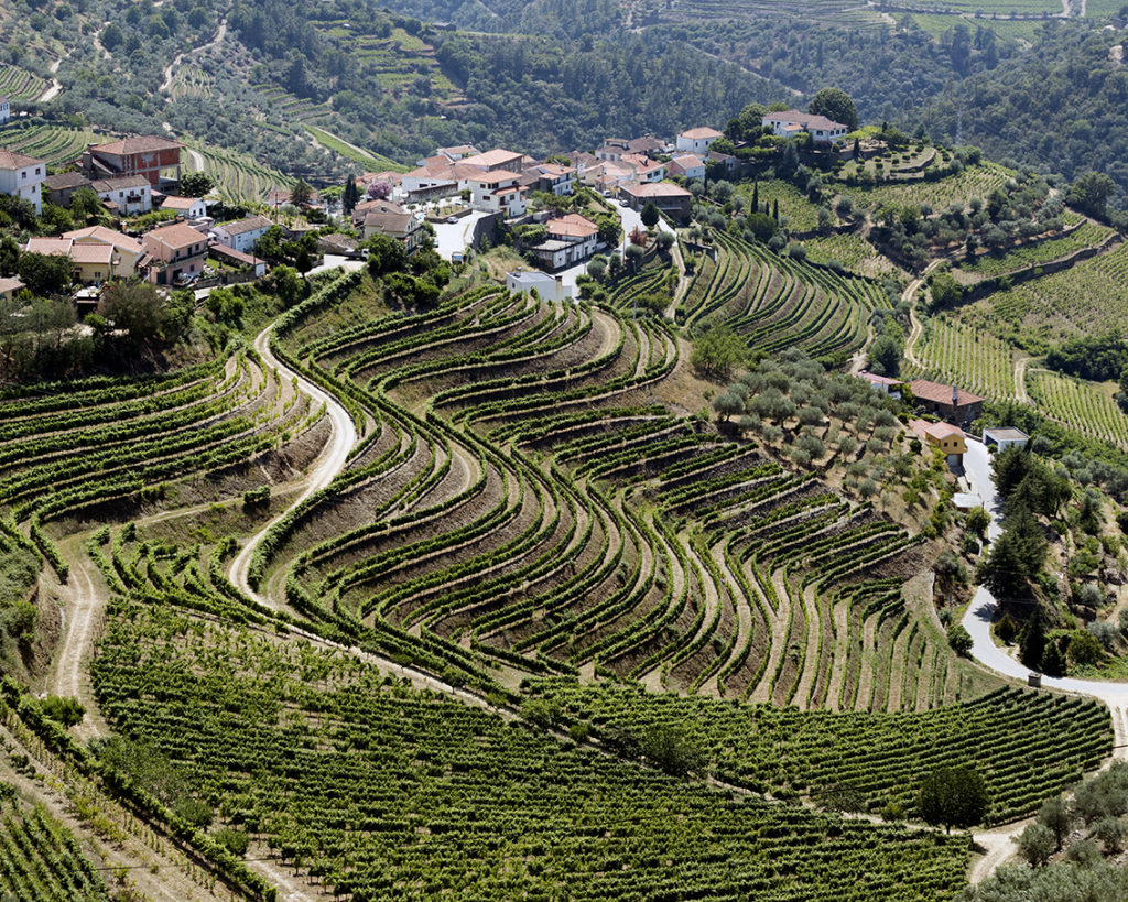 Niepoort: Det nye Portugal